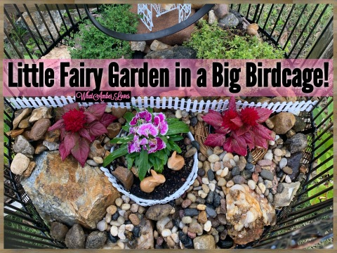 FairyGarden_WhatAmberLoves_0