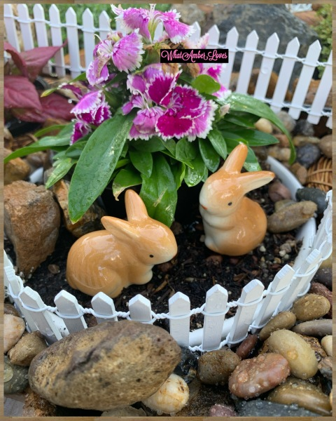 FairyGarden_WhatAmberLoves_4